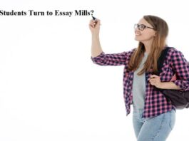 students turn to essay mills